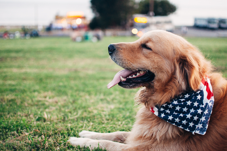 July 4, 2019 Silicon Valley Events