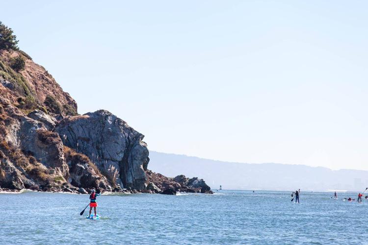 SeaTrek San Francisco Bay Area
