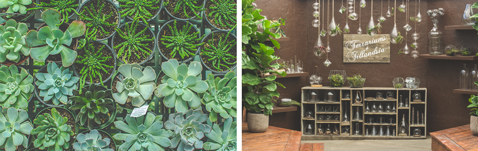 5 Easy Ways To Brighten Up Your Home For Spring