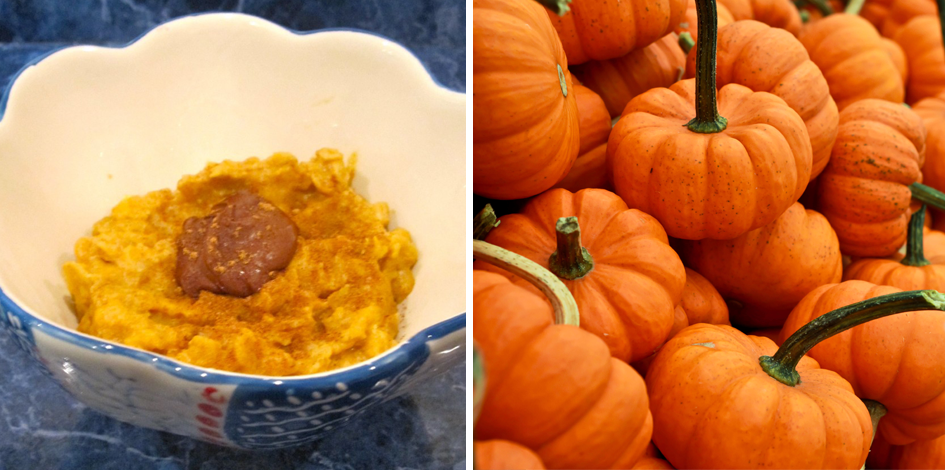 Pumpkin Foods from Nebraska Bloggers