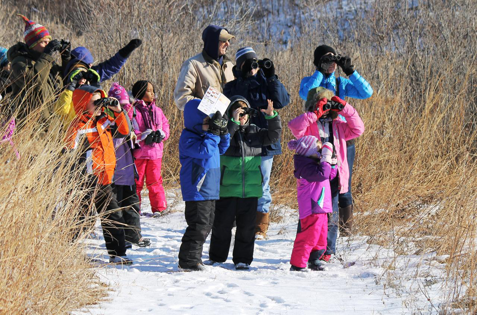 Bird Count for Kids