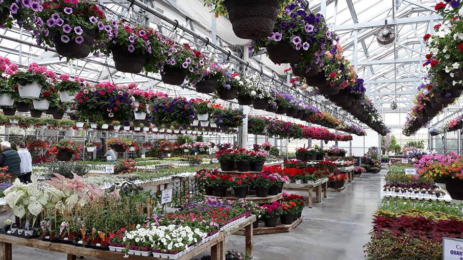 Omaha Garden Centers