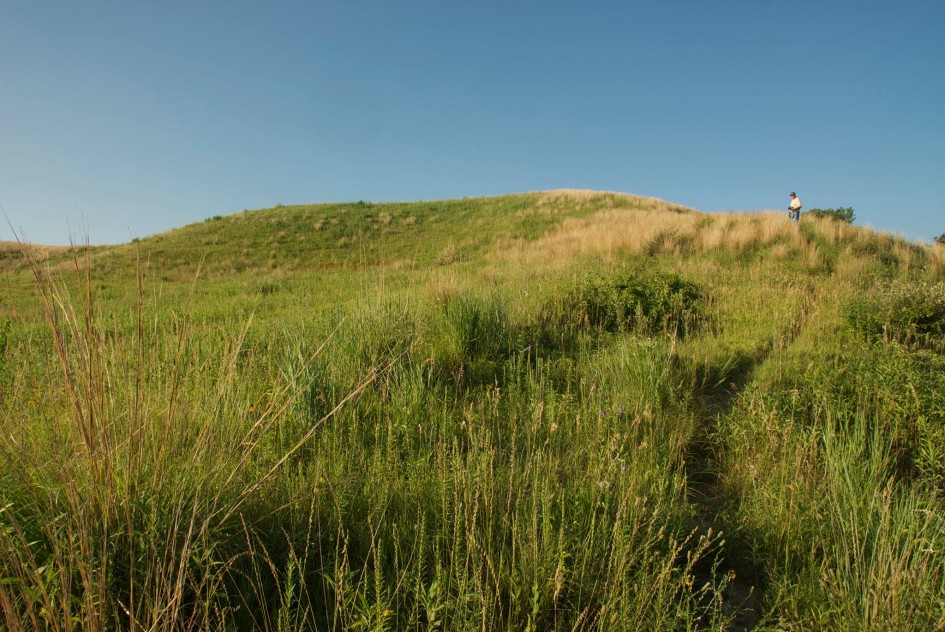 Vincent Bluff State Park