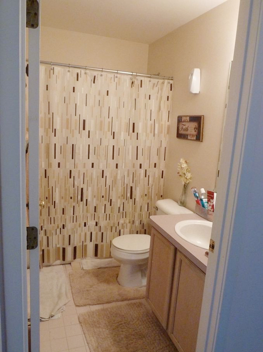 3113 Hawks Avenue- Bathroom