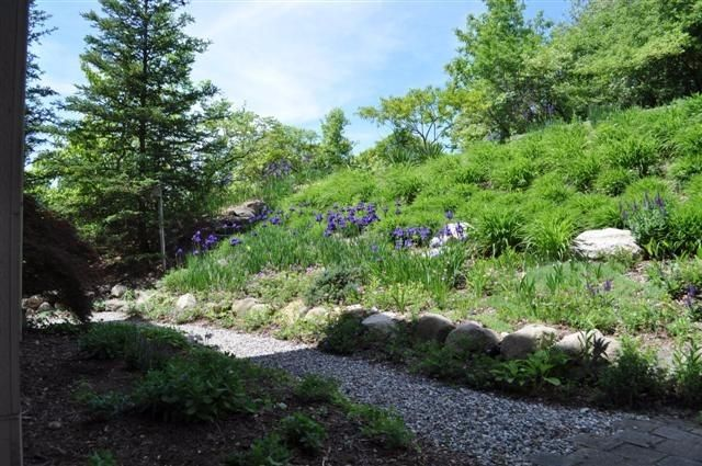 3465 Narrow Gauge Way - Landscaping
