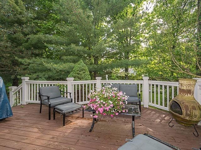 393 Hunter's Trail - Deck