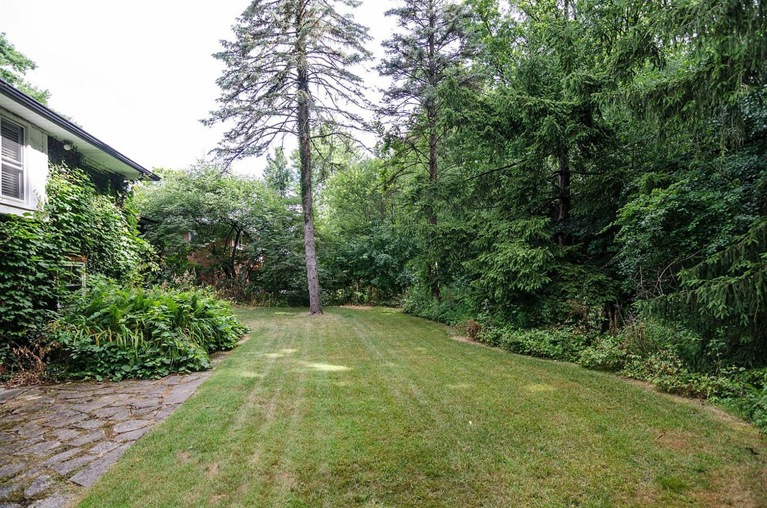 1537 Woodland - Backyard