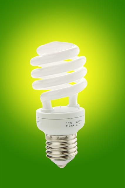 energy efficient light bult