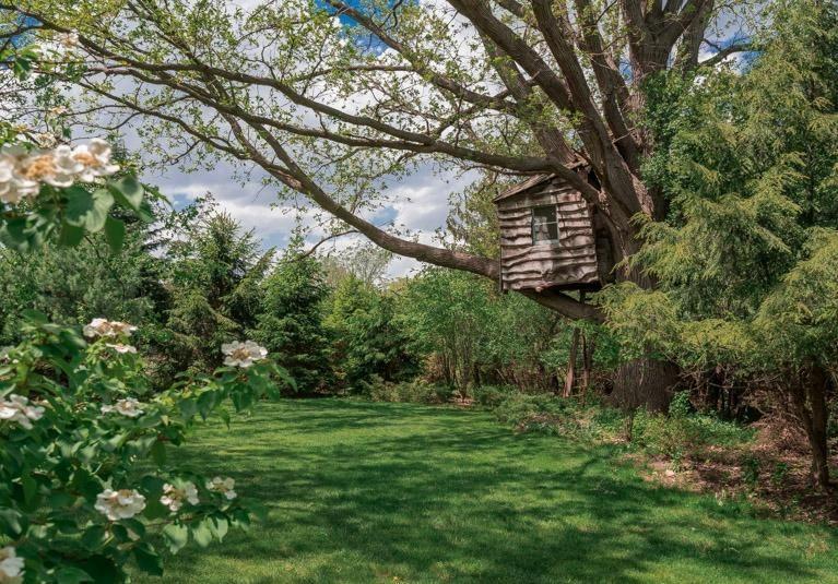 2713 White Oak Drive- Backyard