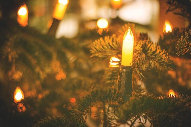Ypsilanti Downtown Tree Lighting