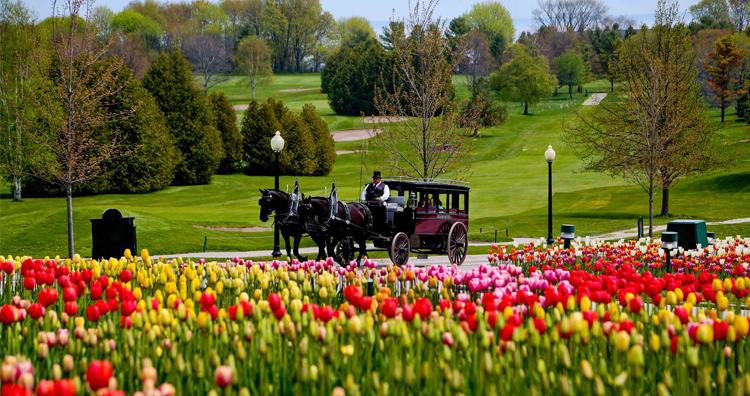 The 6 Essential Weekend Getaways Near Ann Arbor - Reinhart Reinhart