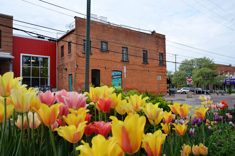 10 Reasons to Stay in Ann Arbor After Graduation