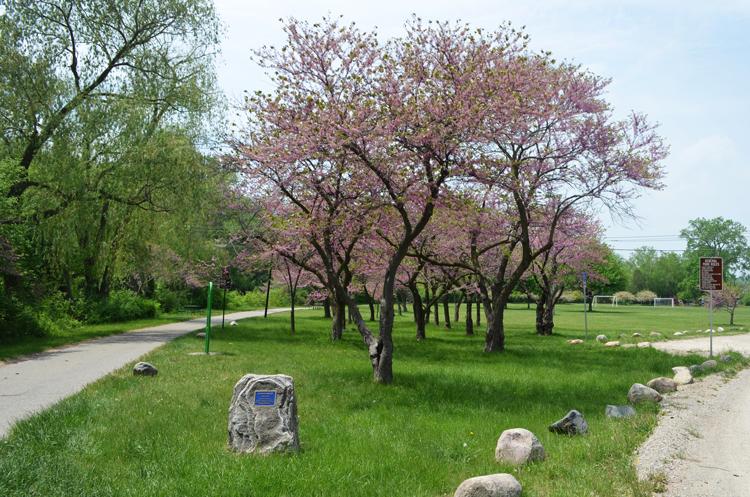 Riverside Park Ann Arbor, MI