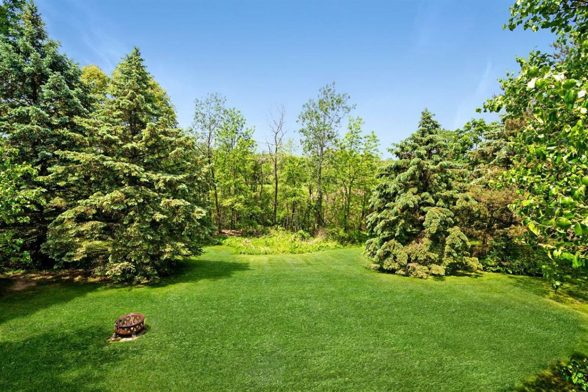 4875 Northgate Drive - Backyard