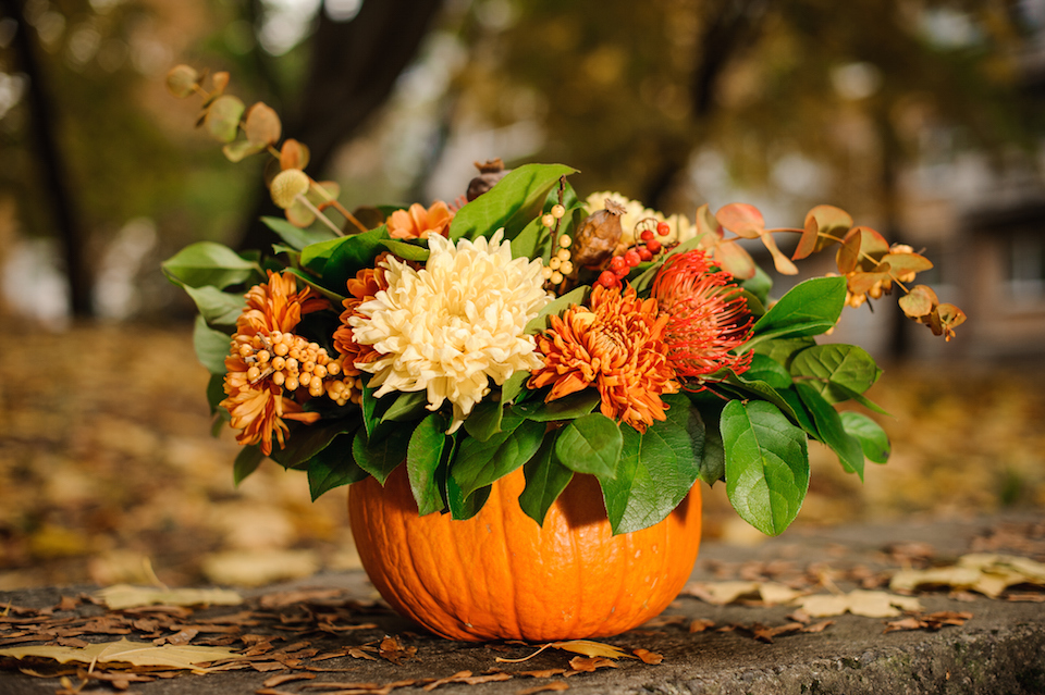 Pumpkin with a beautiful autumn flower composition