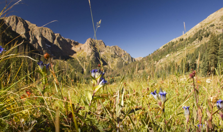 8 Colorado Backpacking Experiences That Should Be on Your
