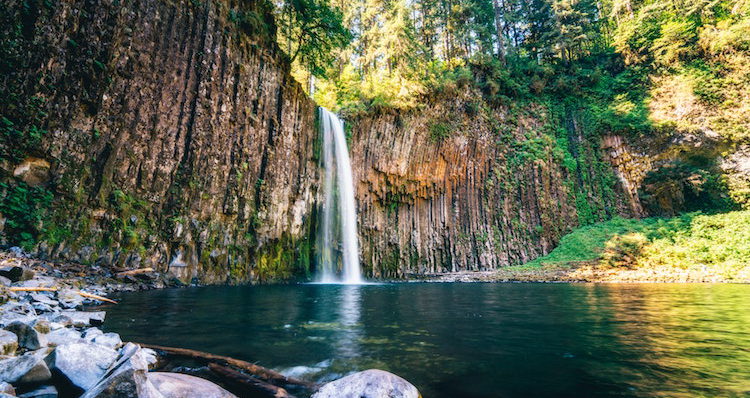 Why You Should Live In The Pacific Northwest The Local Arrow