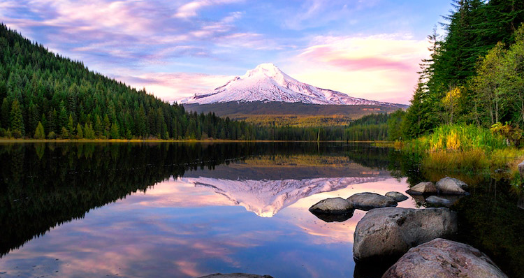 Quintessential Things To Do In The Pacific Northwest During The