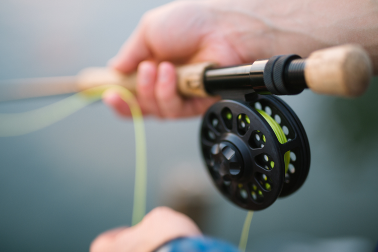Your Guide to Fishing in the Ann Arbor Area - Reinhart Reinhart